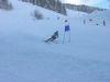 Courses de ski